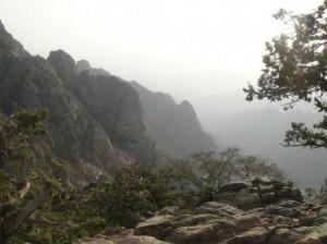 El viaje a Taif