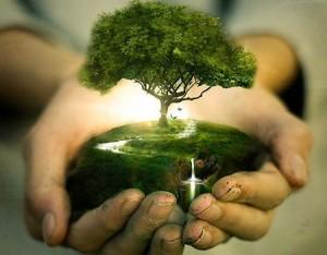 Plantar un árbol en el Islam