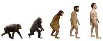 Pero dado que la evolución y la creación son diametralmente opuestas, probar una significad negar la otra.