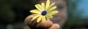 Allah ha bendecido a cada uno de nosotros con cosas que podemos dar, de muchas maneras.