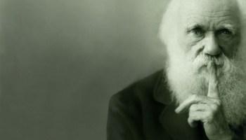 El racismo puede considerase un consecuencia racional de la teoría de la evolución