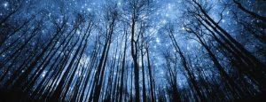 Los milagros son uno de los temas más acalorados en los debates sobre religión y ciencia