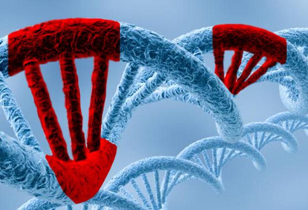 ¿Una única mutación? Aquí tenemos la evolución absurda. Una simple mutación hizo magia y creó a los seres humanos. Que afortunados somos.