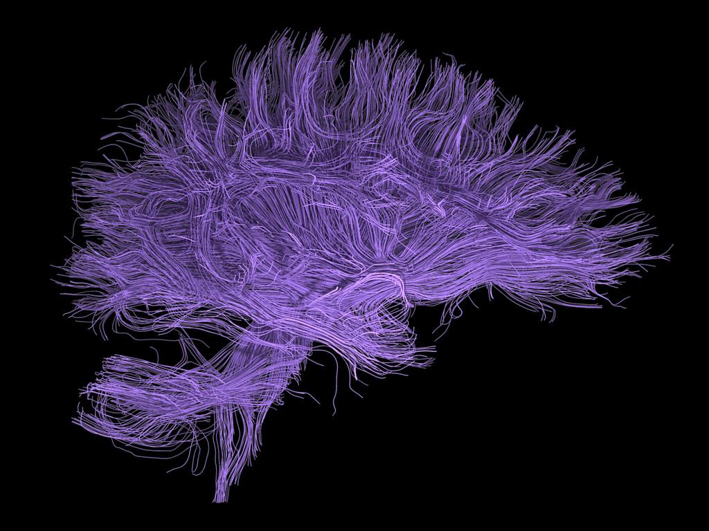 El hecho de que ciertas cosas, como la mente, no puedan ser probadas de forma científica no significa que no existan