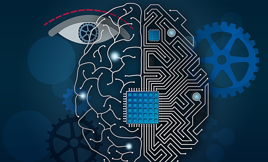 La falsa idea de que existirán ordenadores conscientes se basa en el malentendido de lo que significa información para un persona y un ordenador