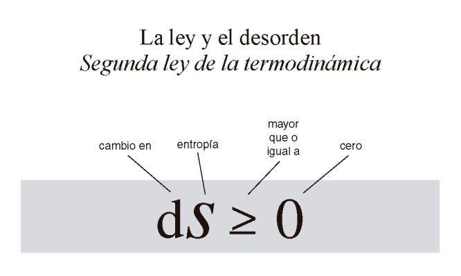 La segunda ley de la termodinámica, que propone que del orden sin injerencia exterior se va al caos, supone un quebradero de cabeza para la evolución
