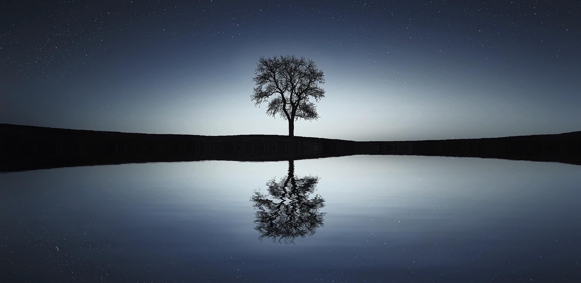 La vida es el constante encuentro con lo otro, todo aquello que no somos nosotros es otro que yo, y mediante este encuentro nos vamos descubriendo a nosotros mismos