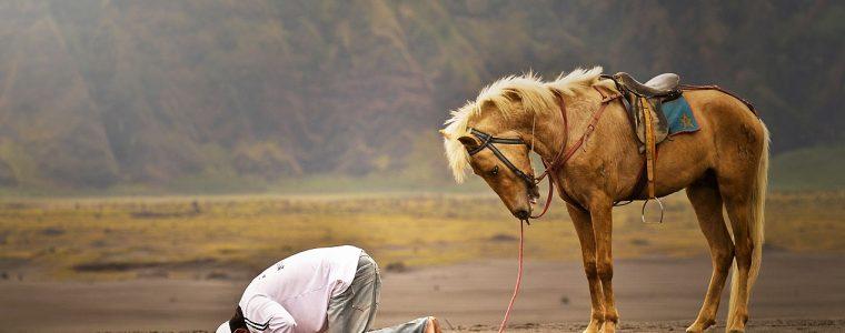 Solo Dios es digno de adoración -'Ibāda-