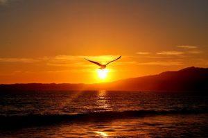 Cuando declaramos nuestra servidumbre a Dios, declaramos nuestra independencia y libertad de todo lo demás en este mundo