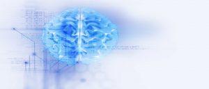Un estudio sobre la neurofisiología de la adoración ha mostrado que la libertad y el alivio que conlleva entregar nuestra voluntad a Dios tienen profundos efectos en nuestra biología cerebral.