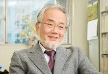 Ciéntífico japonés gana el Premio Nobel por demostrar beneficios del ayuno
